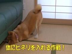 アンヨの長さが足りないの/動画