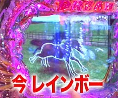 #26黄昏☆びんびん物語緑ドン/GI DREAM/秘宝伝/功夫大戦/動画