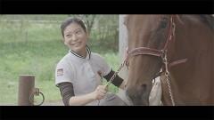 今日もどこかで馬は生まれる/動画