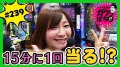 #239 ガケっぱち!!/レギュラー/動画
