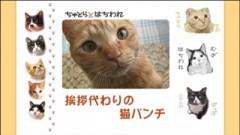 #3 挨拶代わりの猫パンチ/動画