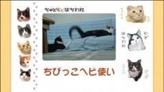 #17 ちびっこヘビ使い/動画