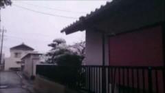 超!!怖い心霊ビデオ 19/動画