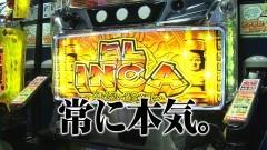 #120 TAI×MAN/美ラメキ/紅き魂は桜の如く/動画