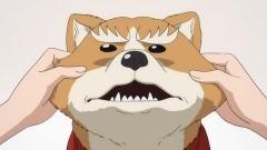 第3話 犬貴族、桶狭間の戦い再び…であるか?/動画