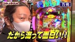 #213 わかってもらえるさ/海JAPAN2 金富士319/仮面ライダー 轟音/クィーンII DX/新・必殺仕置人 TURBO/動画