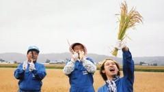 大泉・木村のYOYO'Sファーム(2) #5 収穫は命がけ/動画