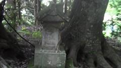 #2 忘れられた神社/動画