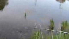 #2 釣り/動画