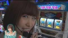 #190 極セレクション/バジリスク絆/沖ドキトロピカル/動画