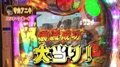 #44 パチンコ頂リーグ/北斗の拳6拳王/AKB48 バラの儀式/動画
