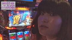 #119 極セレクション/押忍!サラリーマン番長/動画