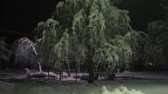 投稿霊像 緑の章/動画