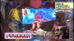 #190 ビワコのラブファイター/CRアニマルパラダイスZCD/動画