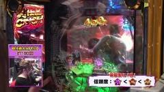 #264 ビワコのラブファイター/新・必殺仕置人/動画