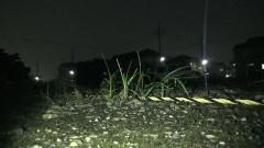 実録!!ほんとにあった恐怖の投稿映像 BEST30 第5弾/動画
